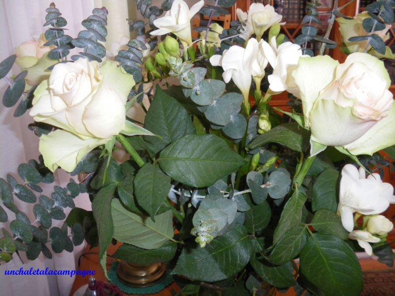 fleursblanches2.jpg