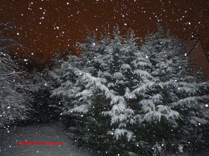 neige8.jpg