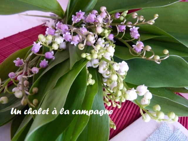 Muguet-rose-2 dans De tout et rien ...