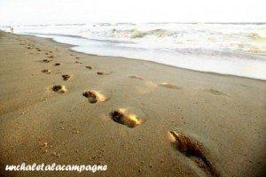 Footprints dans Avec du fil et des aiguilles Empreintes-300x200